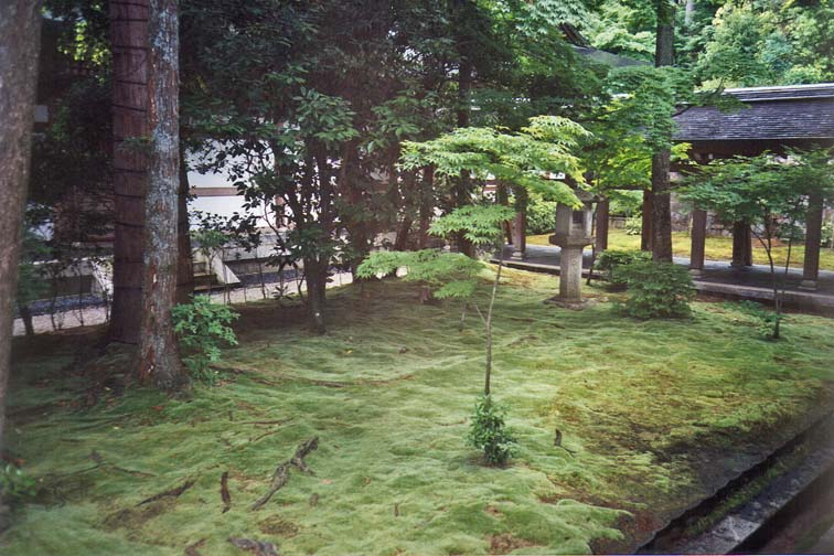 KYOTO: The temple also has a moss garden. The Japanese cultivate blocks of moss as we do sod for lawns in our country.