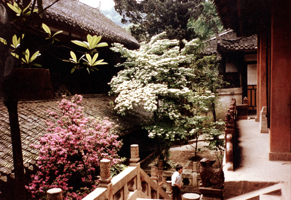 QINGSHEN: The gardens were quite beautiful.