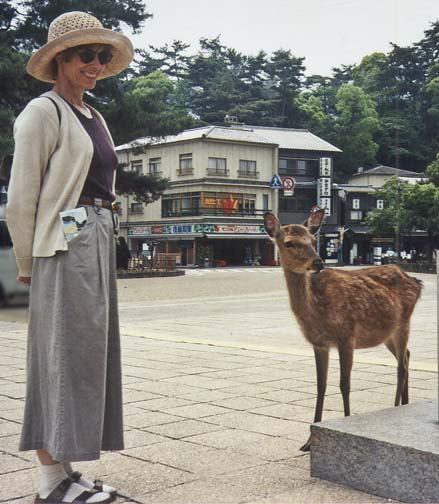 MIYAJIMA: May 18: We took a ferry to the island of Miyajima. One of its famous tame deer greeted us shortly after we landed.