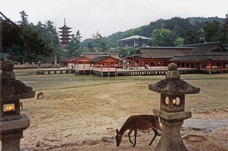 MIYAJIMA: The tide was out and deer were grazing where water normally surrounds the Itsukushima Shrine, which is actually an old palace containing a famous Noh stage. The first palace on this site was built in the latter half of the 6th century, but the current buildings date from 1168. Note the lights in the stone lantern. It was getting late, and they came on as we were walking by. One old man was out clam-digging in the flats.