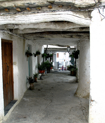 LAS ALPUJARRAS: Traditional architecture, with natural wood beams shielding the house fronts from the summer sun and the winter snow.