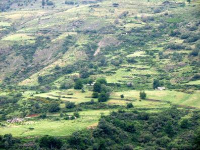 LAS ALPUJARRAS: Terraced slopes to the west.