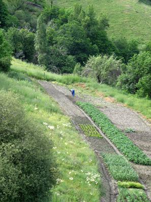 LAS ALPUJARRAS: Vegetables are grown in small plots below Capileira