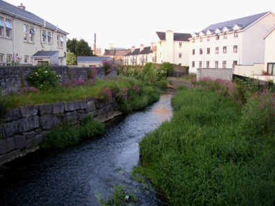 KILKENNY: The little River Bregagh, which flows into the much larger River Nore in the middle of Kilkenny.
