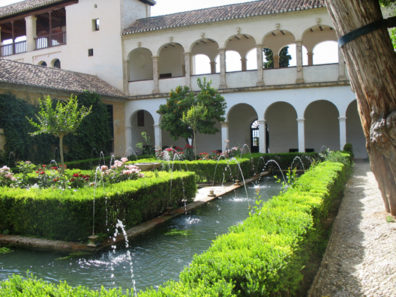 ALHAMBRA: Viewed from near the tree trunk.