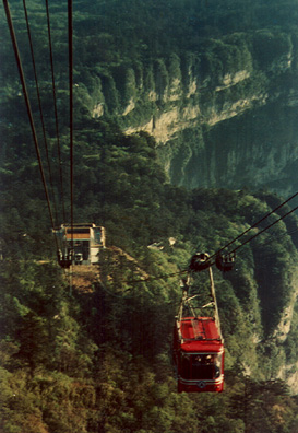 MT. EMEI: A long, jolting bus ride through beautiful mountains (recently reforested) and a steep tram ride brought us to the mountain top (commercial photo).