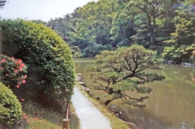 HIROSHIMA: Every tree and shrub in such a garden is carefully pruned to produce an artistic impression. We saw many gardeners doing such work. May 19, 1998