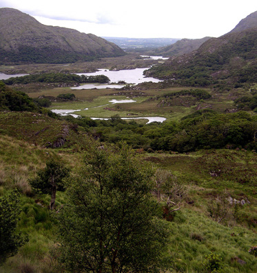 KILLARNEY NAT PARK: Higher up in the park is a rare chance to pull off the extremely narrow road and admire the landscape: Ladies View.