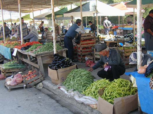 CANAKKALE: There are plenty of modern stores, but the inhabitants also like to shop at the weekly market set up in the park near the river, where everything from handicrafts to running shoes are sold from open, canvas-covered booths. Herw we see green beans and the favorite national vegetable: eggplant. Some restaurants offered a half-dozen different eggplant dishes.