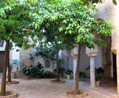 CARMONA: Like many other Andalucian churches, this one was built on the ruins of a Moorish mosque. Remaining from that period is the enclosed courtyard at the entrance where Muslim worshipers would have washed before entering to pray.