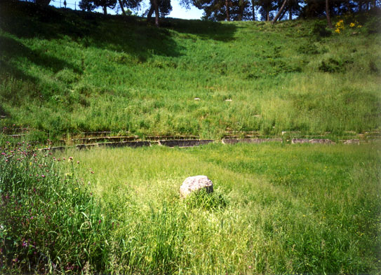 """MEGALOPOLIS: The theater seats at Megalopolis disappearing in the grass. Catherine had ordinarily held """"symposia"""" on classical Greek subjects there. Paul participated by talking about the Arcadian ideal in the arts."""