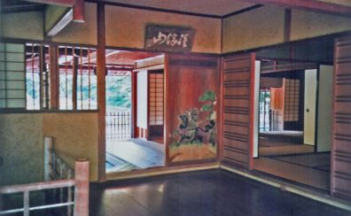 NARA: A glimpse into the cottage used for tea ceremonies. Like most Japanese traditional architecture, it is very open to the outside.