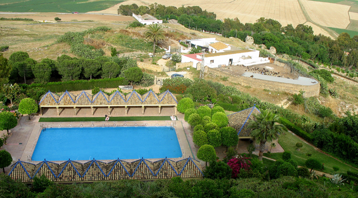 Carmona parador swimming pool and chicken farm common for Chicken in swimming pool