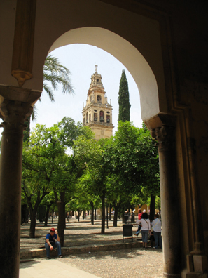 CORDOBA: The view across the courtyard to the tower gives some sense of the building's immense size. The trees are planted in rows corresponding with the rows of pillars inside. Originally the courtyard would have been open and the effect more apparent.