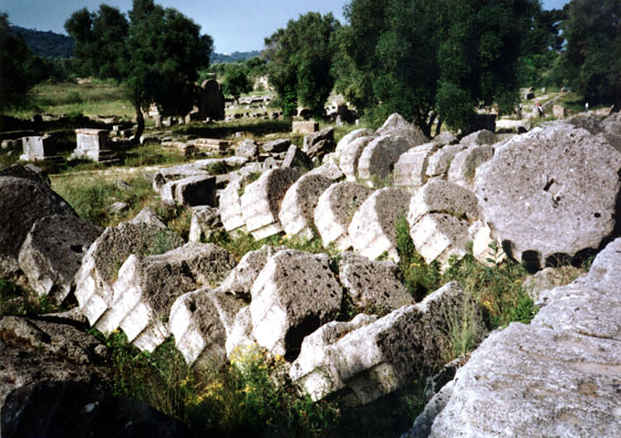 "OLYMPIA: It takes a good deal of imagination to reconstruct these tumbled ruins, but the stacked ""drums"" of the fallen pillars made their own aesthetic statement."