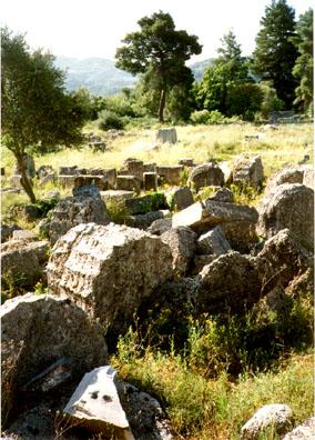 OLYMPIA: More Olympian ruins.