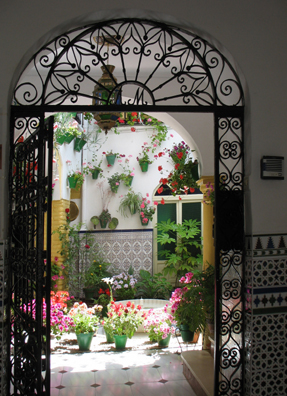 CORDOBA: One of several courtyards open for viewing during the annual city patio contest. Traditional Spanish houses follow the Roman/Moorish model of enclosed spaces around a central courtyard, usually featuring plants and a fountain or pool.