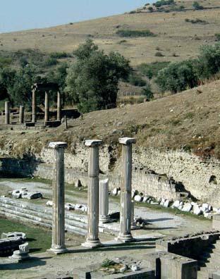 ASCLEPION: More columns