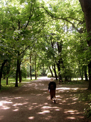 BUDAPEST: On our first day we took a quick tour of some major attractions, including a walk about half-way down the length of the leafy park of Margit-sziget (Margaret Island) in the middle of the Danube.