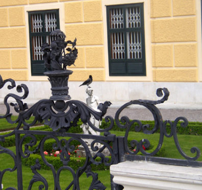 VIENNA: This bird had no respect for the garden's formality.