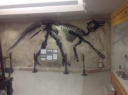 Dinosaur cast