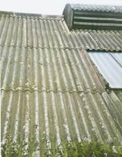 These asbestos cement roof panels have visibly deteriorated