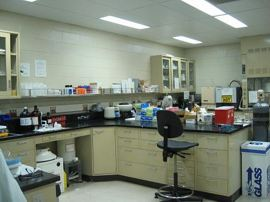 Lab countertops may be ACM, which is resistant to chemicals