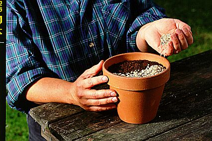 Vermiculite used as a soil additive to hold moisture