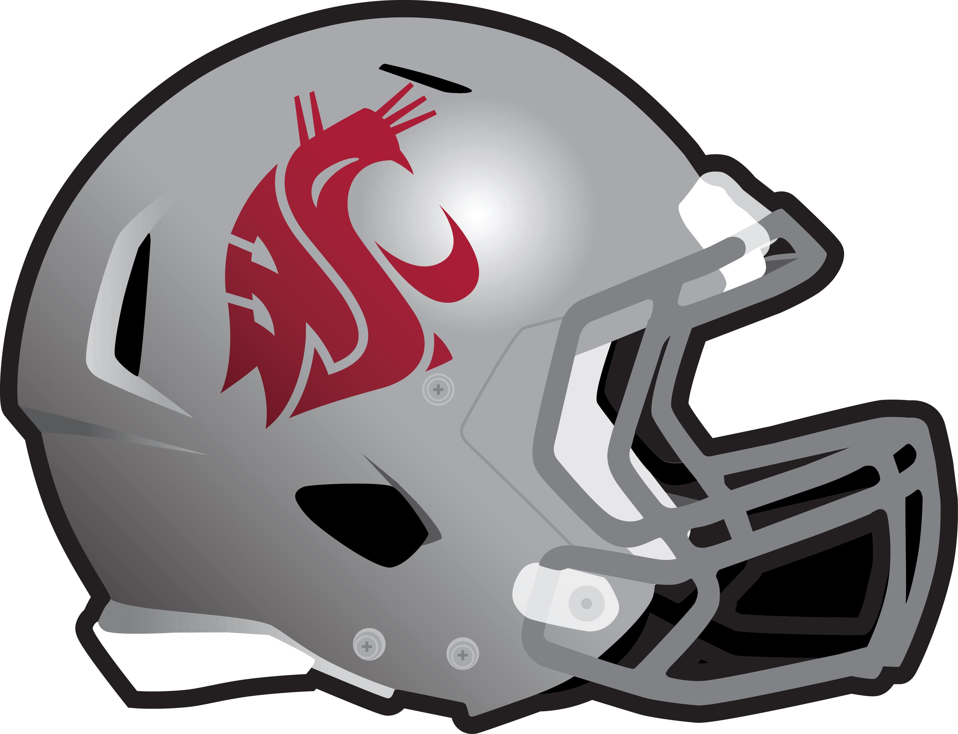 gray helmet 2016