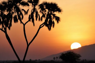 Sunset_DSC_5983