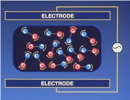 Electrode Diagram