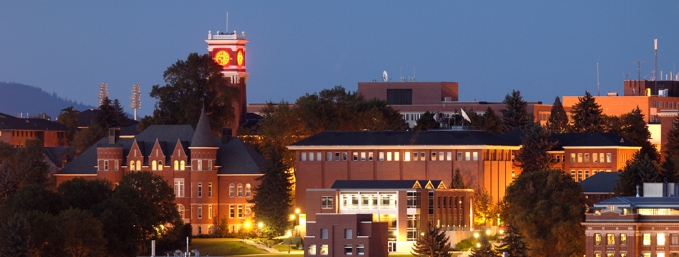 Night view of WSU campus