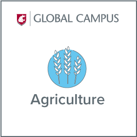 WSU Global Campus Agriculture.