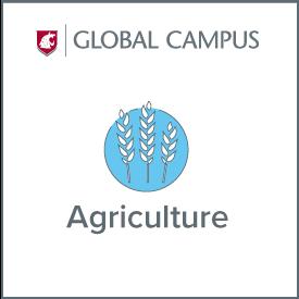 WSU Global Campus Agriculture.