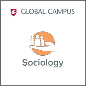 WSU Global Campus Sociology.
