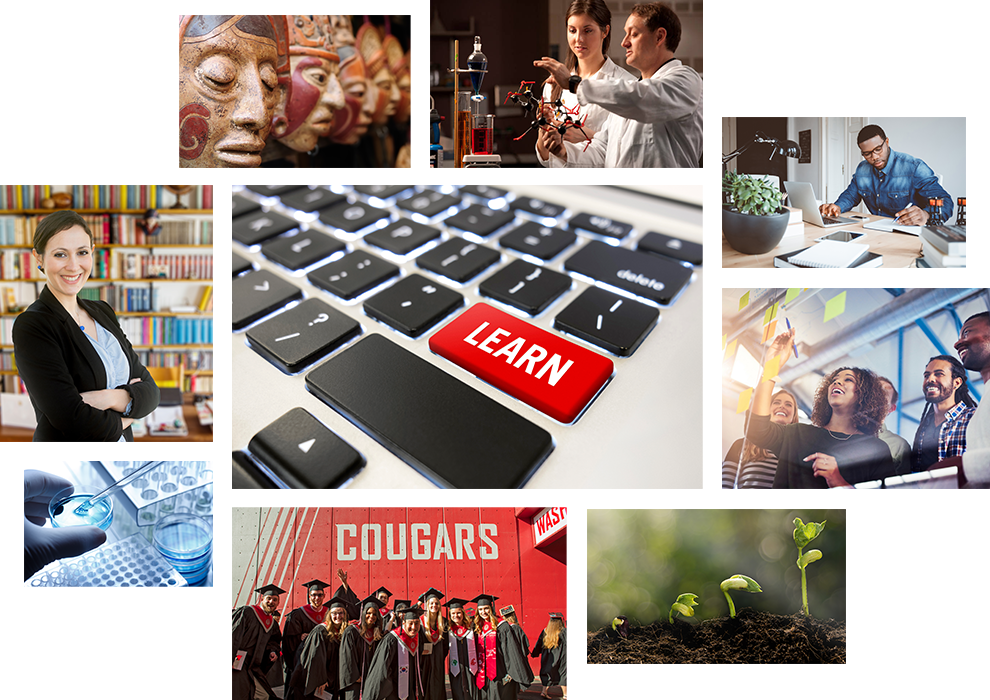 Photo collage of Global Campus students and activities