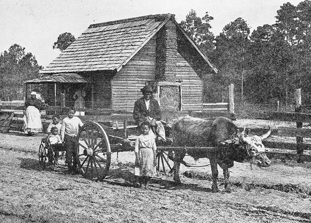 Antique photograph: Farm in south USA.
