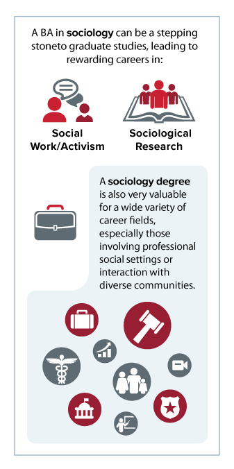 Infographic: Sociology degree.