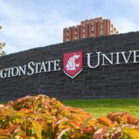 Photo of Washington State University Sign