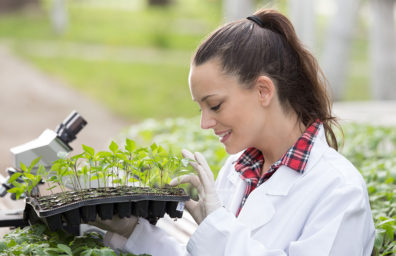 Photo: Young agronomist in white coat holding plant tray with seedlings in greenhouse.