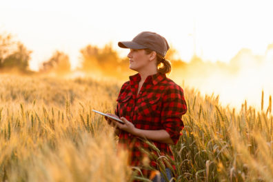 Photo: A farmer examines the field of cereals and sends data to the cloud from the tablet. Smart farming and digital agriculture.