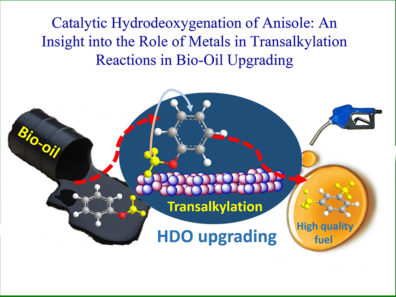 Catalytic Hydrodeoxygenation of Anisole