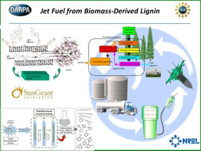 Integrated Production of Cellulosic and Lignin Biofuels