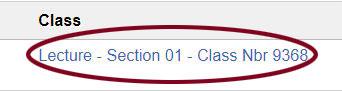 Screenshot: Class section information.