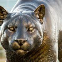 the cougar pride sculpture