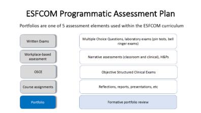 ESFCOM programmatic assessment plan