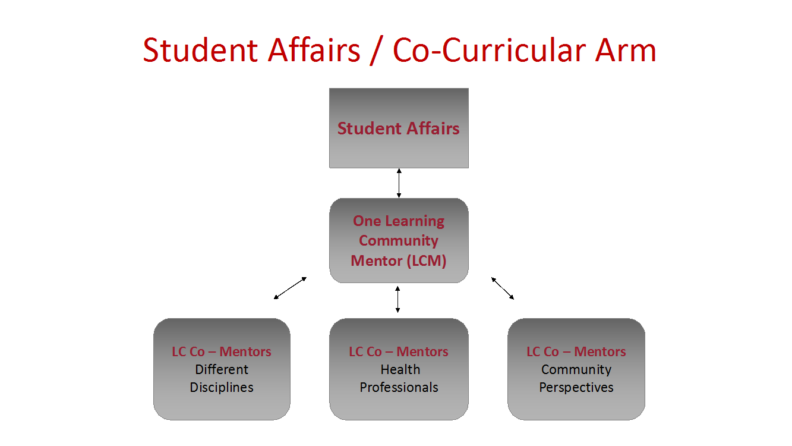 Student Affairs Co-Curricular Arm