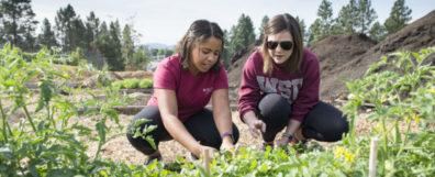 NEP students working in a garden