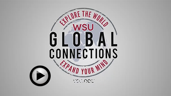 global connections video front screen