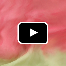rose and gold silk texture in background, video play button in foreground